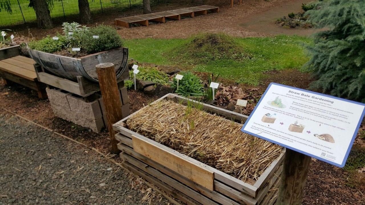 Eco-Road Trip – OSU Master Gardens & Grant\'s Pass – Taylor Scott Nelson